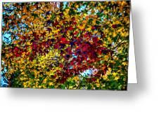 The Rainbow Tree Greeting Card