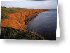 The Red Cliffs Of Prince Edward Island Greeting Card