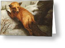 The Red Fox Greeting Card
