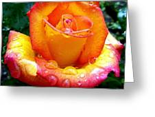 The Red Gold Rose Greeting Card
