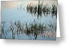 The Reeds Greeting Card