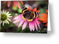 The Regal Red Admiral Greeting Card
