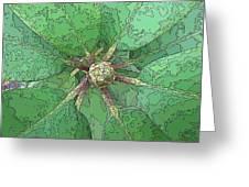 The Rhody Bud Greeting Card