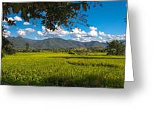 The Rice Fields Of Pai, Thailnad Greeting Card