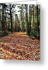 The Richness Of Autumn Treasures Greeting Card
