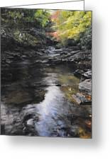 The River At Lady Bagots Greeting Card