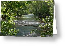 The River In Spring Greeting Card