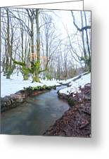 The River In The Otzarreta Forest With Snow Greeting Card