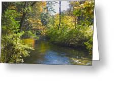 The River  Greeting Card by Sheryl Thomas