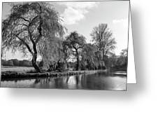 The River Wey,guildford, Surrey,england  Greeting Card