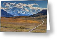 The Road To Denali Greeting Card