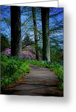The Road To Peace And Quiet Greeting Card