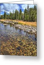 The Rocks Of Rock Creek Greeting Card