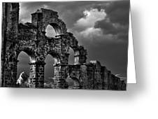 The Roman Aqueduct At Aspendos, Turkey.    Black And White Greeting Card