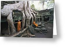 The Roots Of A Strangler Fig Creep Greeting Card by Paul Chesley