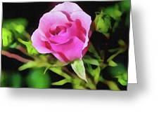 The Rose Greeting Card by John Winner