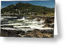 The Rugged Beauty Of The Oregon Coast - 1 Greeting Card