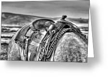 The Saddle Bw  Greeting Card
