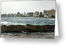 The San Juan Puerto Rico Cityscape Greeting Card