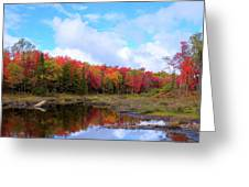 The Scarlet Reds Of Autumn Greeting Card
