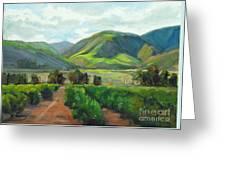The Scent Of Citrus - Santa Paula Citrus Grove Central Coast Landscape Greeting Card