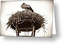 The Schierstein Stork Sepia Greeting Card