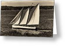 The Schooner Adirondack II Antiqued Greeting Card