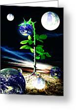 The Seed Of Life Greeting Card