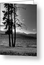The Selkirk Mountains On Priest Lake Greeting Card