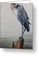The Sentinel - Portrait Of A Great Blue Heron Greeting Card