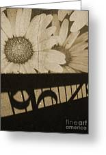The Shadow Flowers Greeting Card
