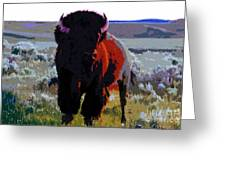 The Shamans Buffalo Greeting Card