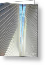 The Skylight Of  The Oculus Greeting Card