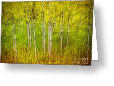 The Small Forest Greeting Card