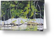 The Snow By The Pond Greeting Card