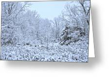 The Snow Falls To The Trees Greeting Card