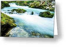 The Soteska Vintgar Gorge, Gorje, Near Bled, Slovenia Greeting Card