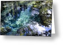 The Springs Greeting Card