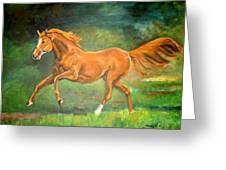 The Stallion-horse Art Painting  Greeting Card