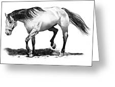 The Stallion Greeting Card