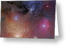 The Starforming Region Of Rho Ophiuchus Greeting Card