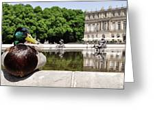 The Stately Duck Greeting Card