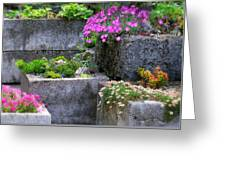 The Stone Planters Greeting Card