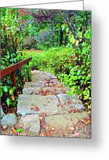 The Stone Steps Greeting Card