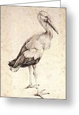 The Stork 1515 Greeting Card