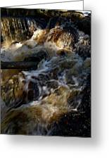 The Stream 1 Greeting Card