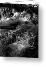 The Stream In Bw Greeting Card
