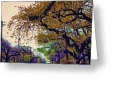 The Street Trees Greeting Card