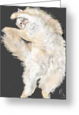 The Stretching Cat Greeting Card
