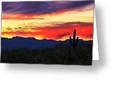 Sunrise In Tucson  Greeting Card